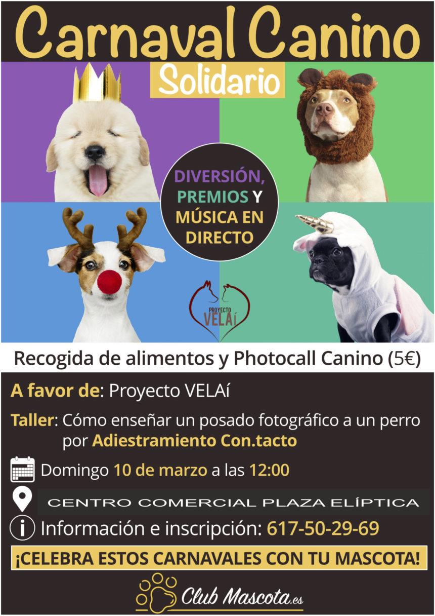 carnaval-canino-solidario